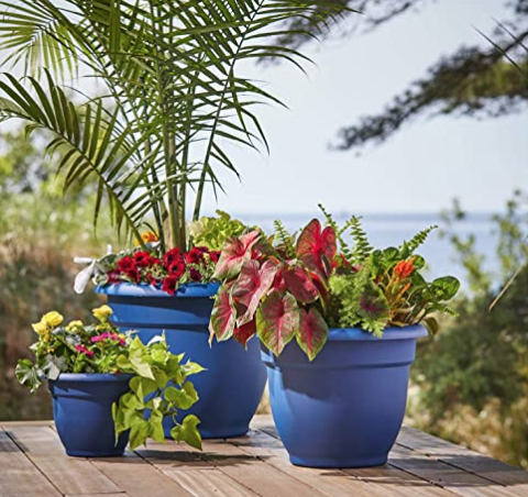 Choosing a pot for container gardening with flowers