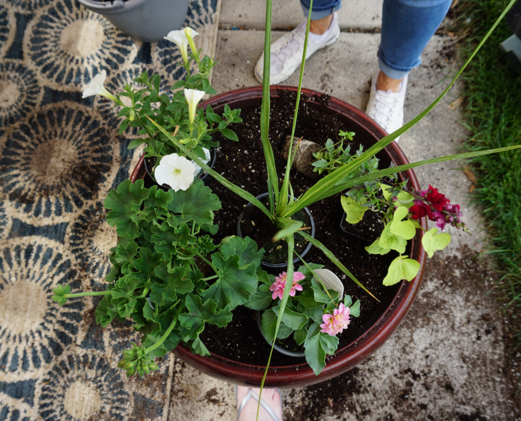 Finished flower pot container garden