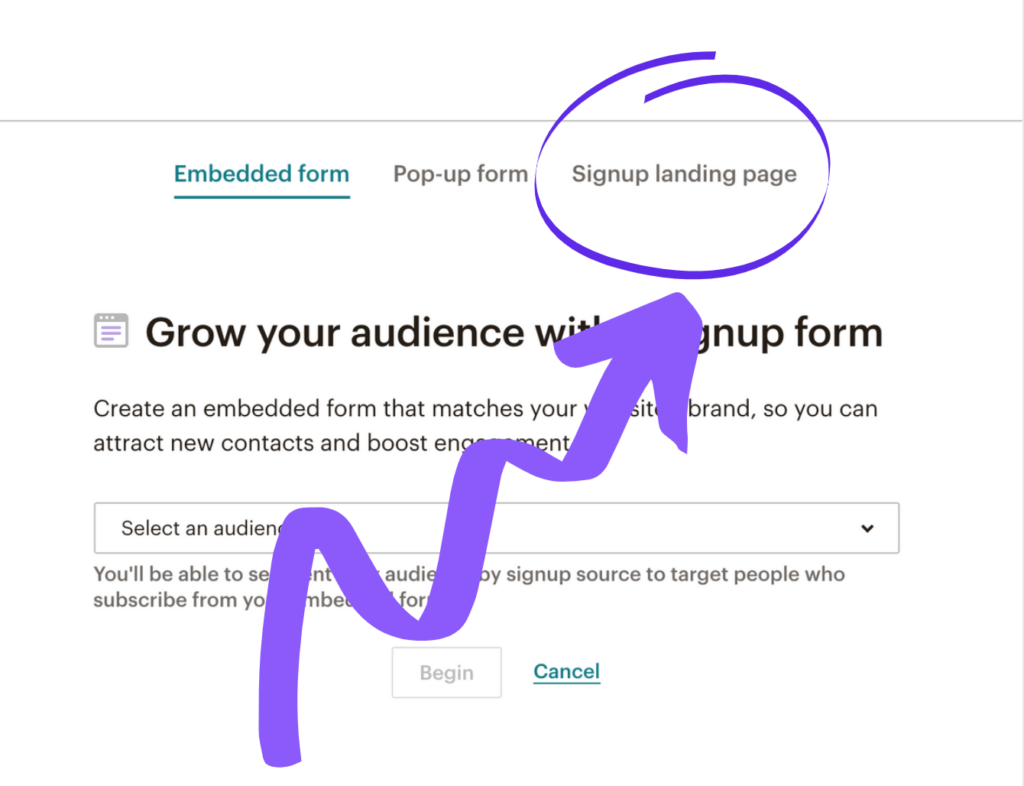 Setting up a newsletter link in MailChimp step 8
