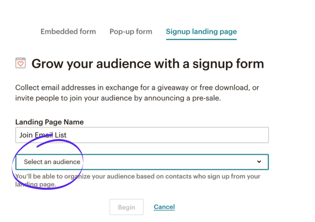 Setting up a newsletter link in MailChimp step 10